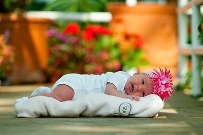 Pinner Baby