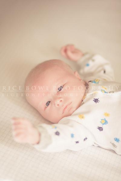 Noah Vance - 1 Month