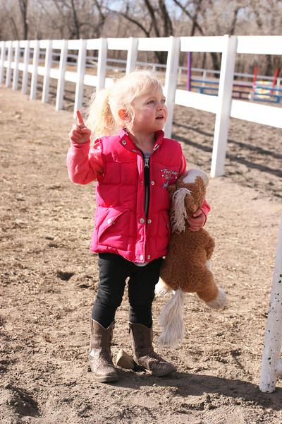 Equine Trainer of the Future.