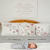 IMG_Newborn_Portrait_Greenvilel_NC-0I6A6447