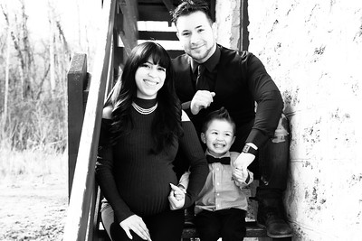 wlc Bella's Family 176 2018