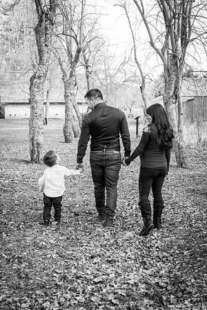 wlc Bella's Family 274 2018