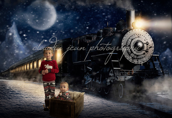 Polarexpress1_2