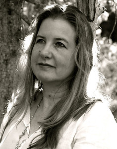 Janet Fitch, Writer
