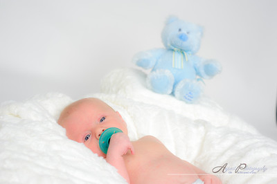 20101029Caleb_newborn_portraits15