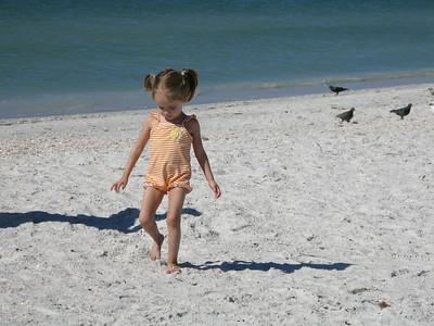 FL 2010 11 66