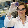 •Cara Pager, an RNA virologist specializing in the role of RNA in the virus that causes hepatitis C, an infectious liver disease. It is estimated that some two million people in the U.S. and 170 million people worldwide are living with chronic hepatitis C. She earned her bachelor's and master's degrees at the University of the Witwatersrand, South Africa, and her Ph.D. at the University of Kentucky. photographer: Mark Schmidt