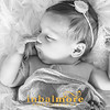 F0189 Newborn Cantwell no  2-0004