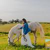 Carolynn's Horseys_009