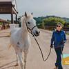 Carolynn's Horseys_001