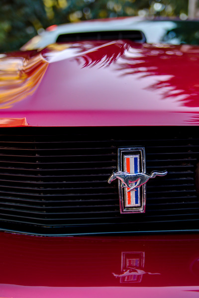Mustang (0611_2_3)