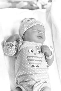 Baby Cummings-24
