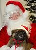 Holiday Pet Portraits-026