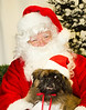 Holiday Pet Portraits-029