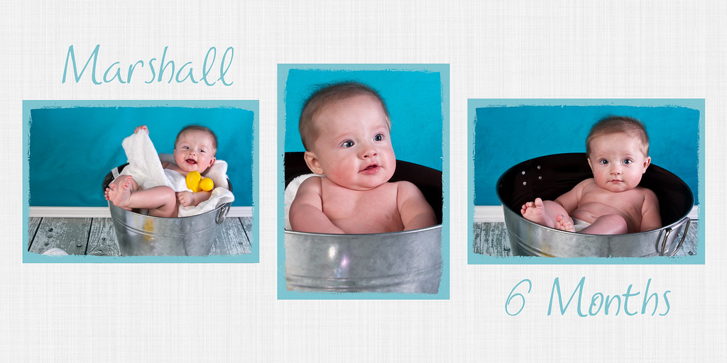 Marshall 6 Months 10x20 Collage