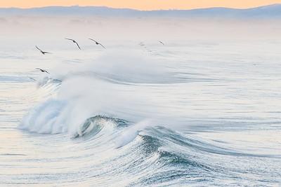 Wave No 5