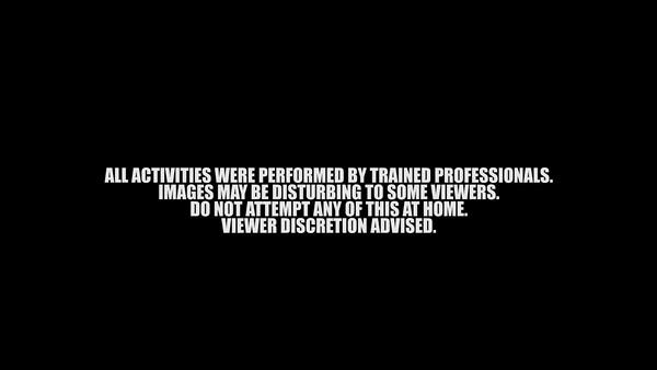 Corey Divine - Suspension Tattoo & Body Mods