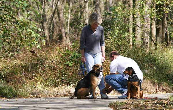 Oct 21, '06: Anne & Bo.... w/ Wags...and...Maggie