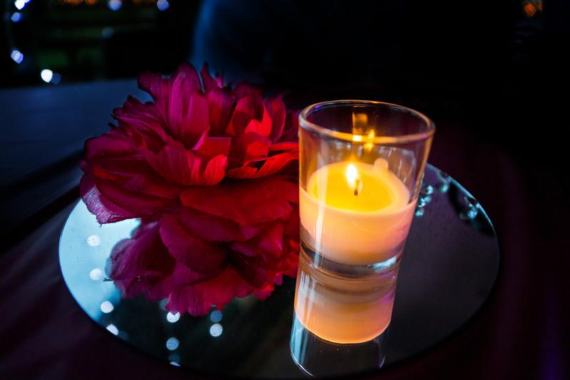 Reception 1060 May 9 2015_edited-1