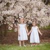 spring-6400
