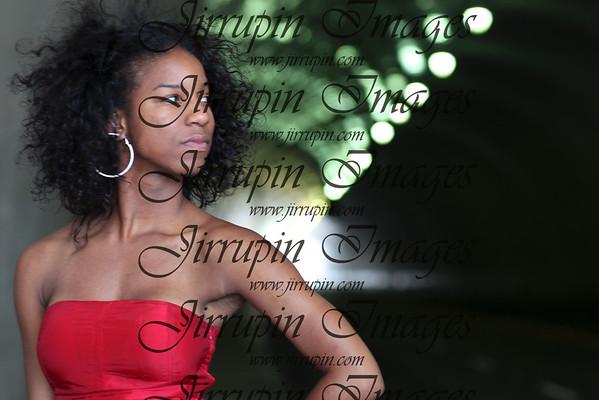 Donna Simone - Roars!