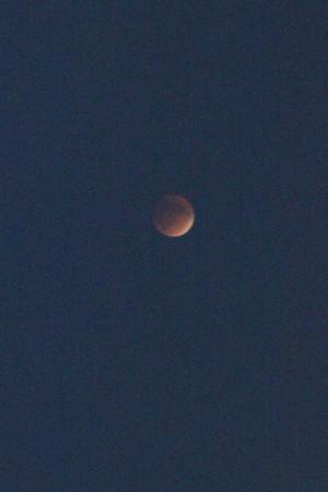 Blood red moon & Eclipse  Sept 27 2015 Copyrt m burgess