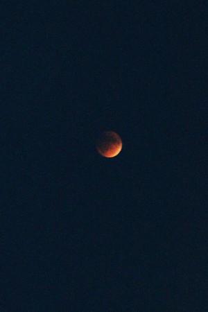 Blood moon  Sept 27 2015 copyrt m burgess