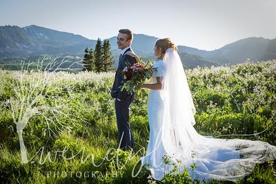 wlc Ellis bridals 19 552019