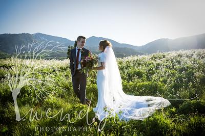wlc Ellis bridals 19 602019