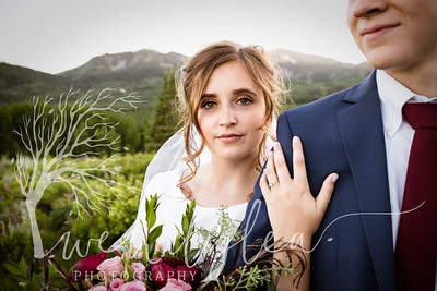 wlc Ellis bridals 19 3282019-Edit