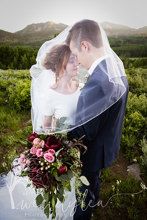 wlc Ellis bridals 19 2832019