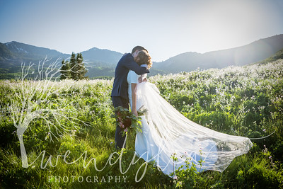 wlc Ellis bridals 19 742019