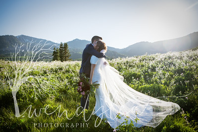 wlc Ellis bridals 19 712019