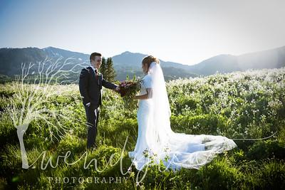 wlc Ellis bridals 19 662019