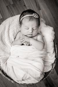 Newborn_Emma-24