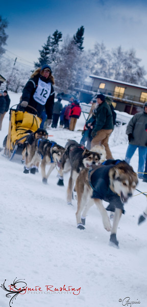 Wild and Free Mushing, Brent Sass, Yukon Quest 2010, Fairbanks, AK