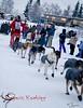 Mackey's Comeback Kennel, Lance Mackey, Yukon Quest 2010, Fairbanks, AK