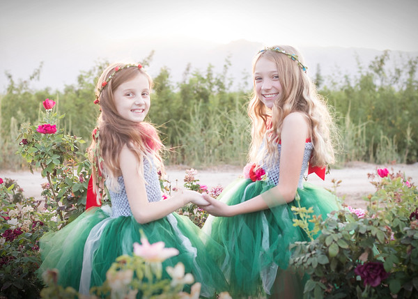 Fairies in the roses