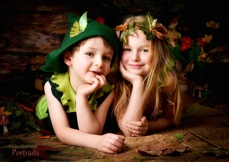 Enchanted Fairy & Elves