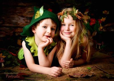 Enchanted Fairy & Elves