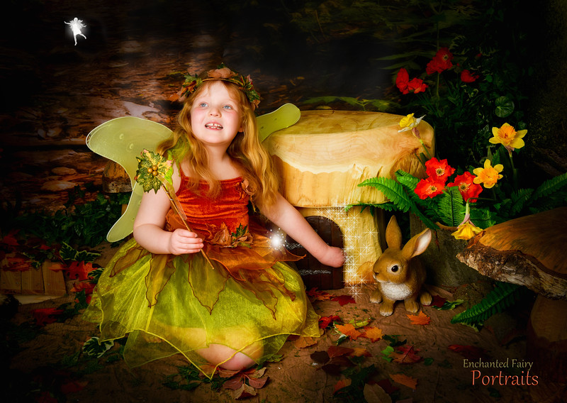 Tina Jones Fairy set