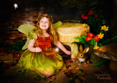 Tina Jones Fairy set