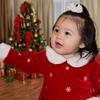 PC014595 Christmas V5SC15