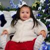 PC049882 Fireplace-Christmas-Blue