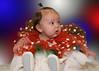 001_0051 Ornaments