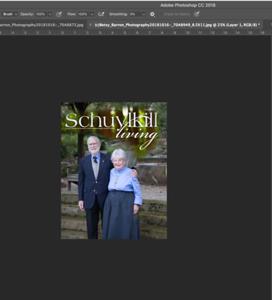 Screen Shot 2018-10-18 at 2 35 48 PM