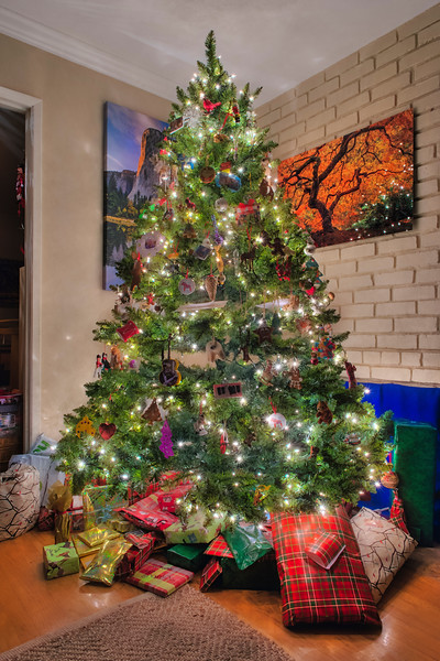 Christmas-Tree-2015_D819306