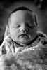 Portrait_Kelsay_Tennyson_IMG_7086