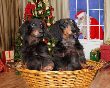 001_0064 Christmas V5SC01