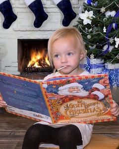 PB024557 Fireplace-Christmas-Blue